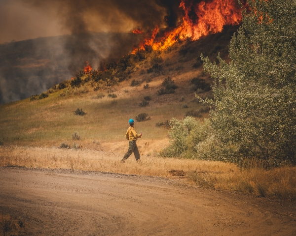 A firefighter works alone against a wildfire