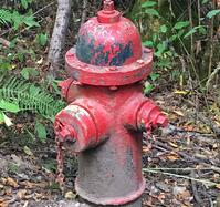 Fire_hydrant_red.jpg