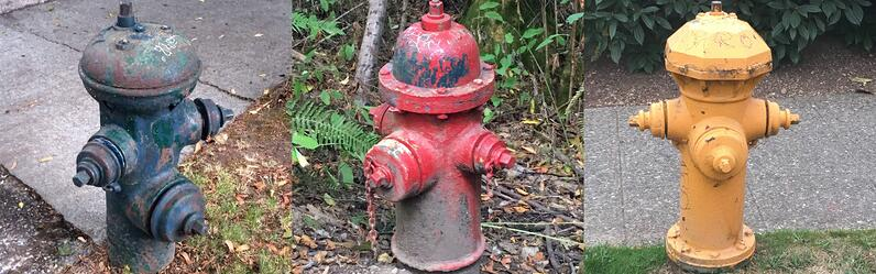 Three fire hydrants of different colors