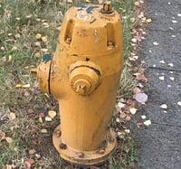 Fire_hydrant_yellowstub.jpg