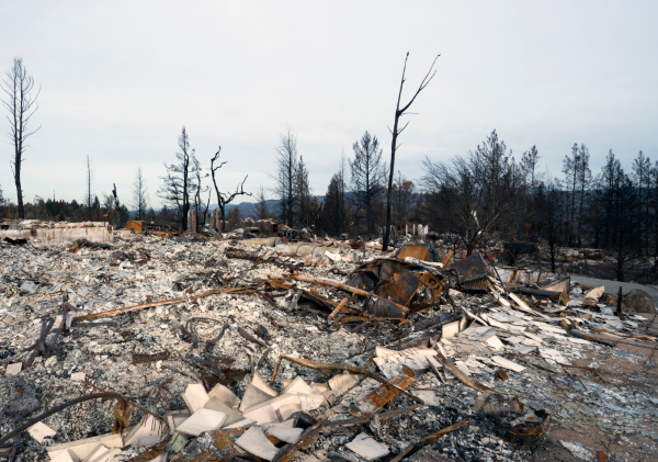 A neighborhood destroyed by wildfire