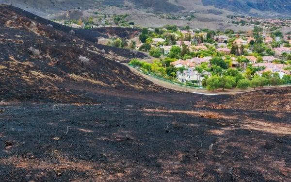 Scorched earth near a housing development