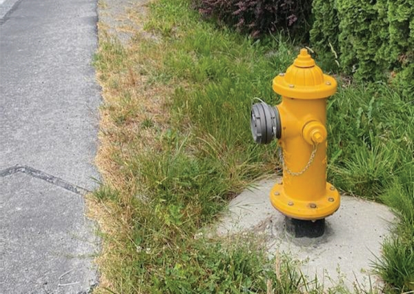 A yellow fire hydrant without color coding
